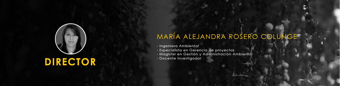 Director Plantas aromáticas Aunar